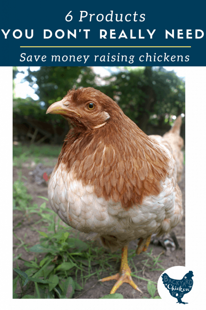 "Ditch these six chicken products you don't need you can save money raising chickens! Many things ""required"" to buy for chickens aren't necessary after all."