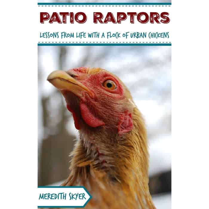 Patio Raptors