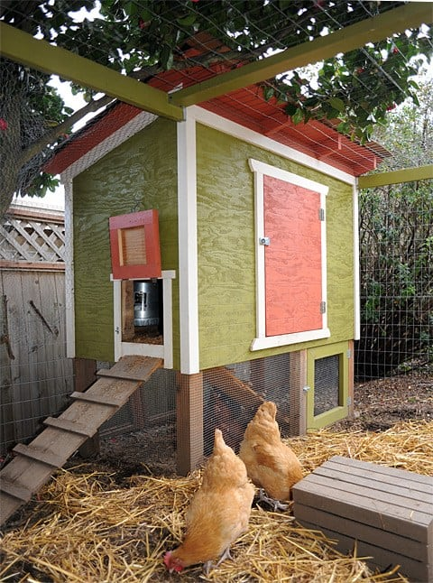 These 10 free Backyard Chicken Coop Plans offer a variety of sizes, shapes, and styles to make you and your chickens happy!