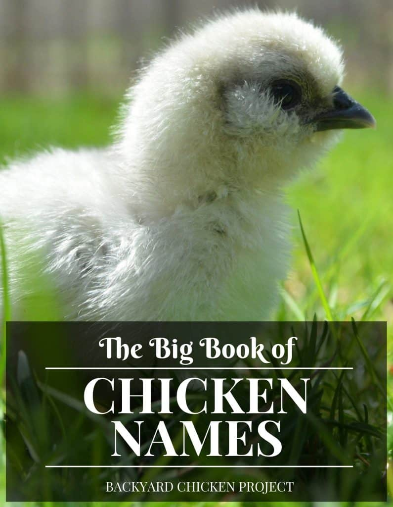 The Big Book of Chicken Names