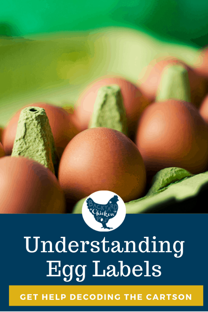 Understanding egg labels, something that should be fairly straight forward, has become more difficult with the ever growing list of farm lingo to keep straight. We're here to help you finally decode that egg label so you can be an eggs-pert consumer. #homesteading #homestead #backyardchickens #chickens #raisingchickens #poultry