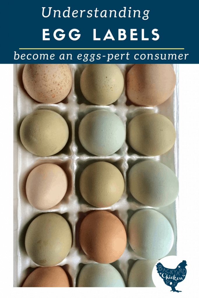 Understanding egg labels, something that should be fairly straight forward, has become more difficult with the ever growing list of farm lingo to keep straight. We're here to help you finally decode that egg label so you can be an eggs-pert consumer