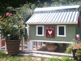 If the thought of building a chicken coop from scratch has you down, this one's for you! We found 8 beautiful and easy to assemble chicken coop kits available on Etsy!