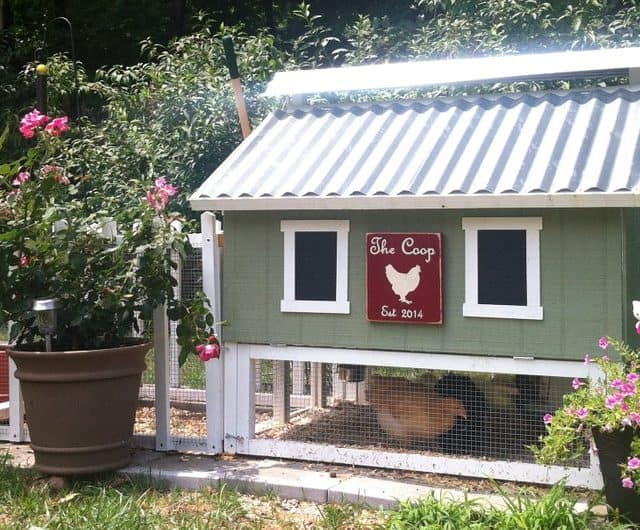 8 Beautiful Chicken Coop Kits Available on Etsy