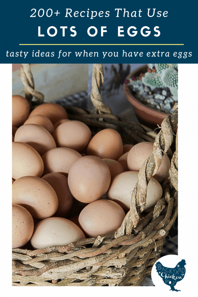 Got extra eggs on hand? Here are over 200 recipes that use a LOT of eggs! Every egg heavy recipe in this ultimate list has 4+ eggs! So let's get cracking!