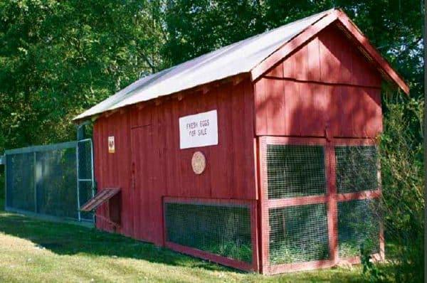 20 Free Chicken Coop Plans
