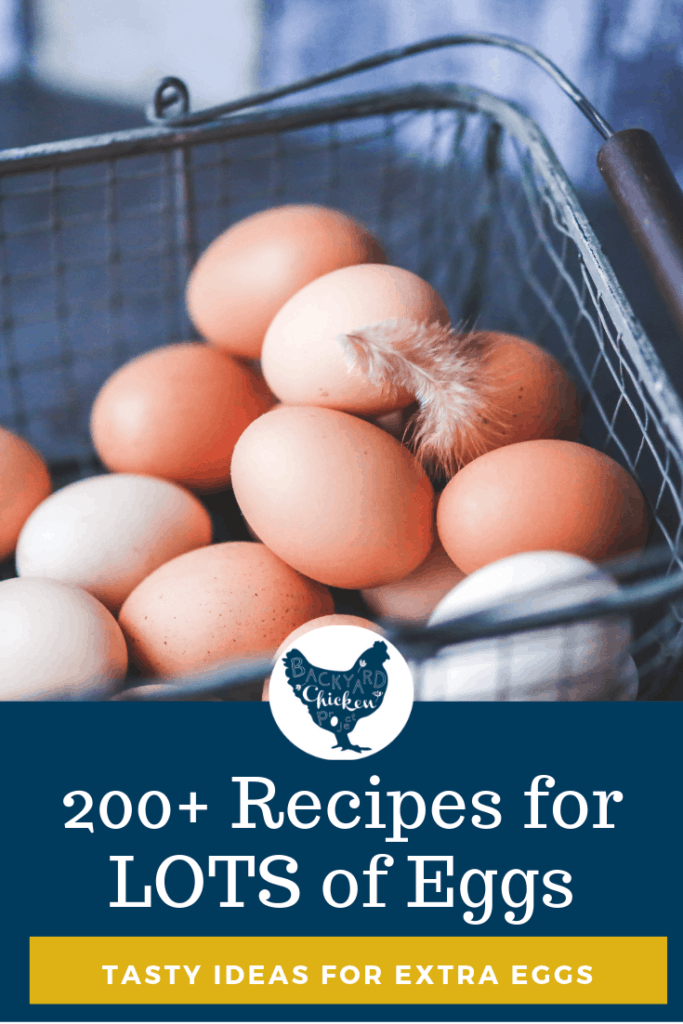 Got extra eggs on hand? Here are over 200 recipes that use a LOT of eggs! Every egg heavy recipe in this ultimate list has 4+ eggs! So let's get cracking! #homesteading #homestead #backyardchickens #chickens #raisingchickens #poultry #eggs #eggrecipes