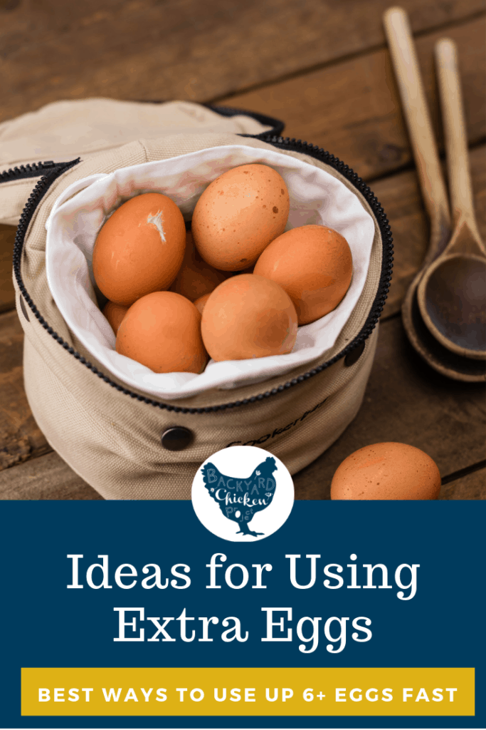 Sometimes your chickens just lay SO MANY eggs that you can't deal. We have a dozen fresh ideas to help you use up your egg bounty! #homesteading #homestead #backyardchickens #chickens #raisingchickens #poultry #eggrecipes #eggs