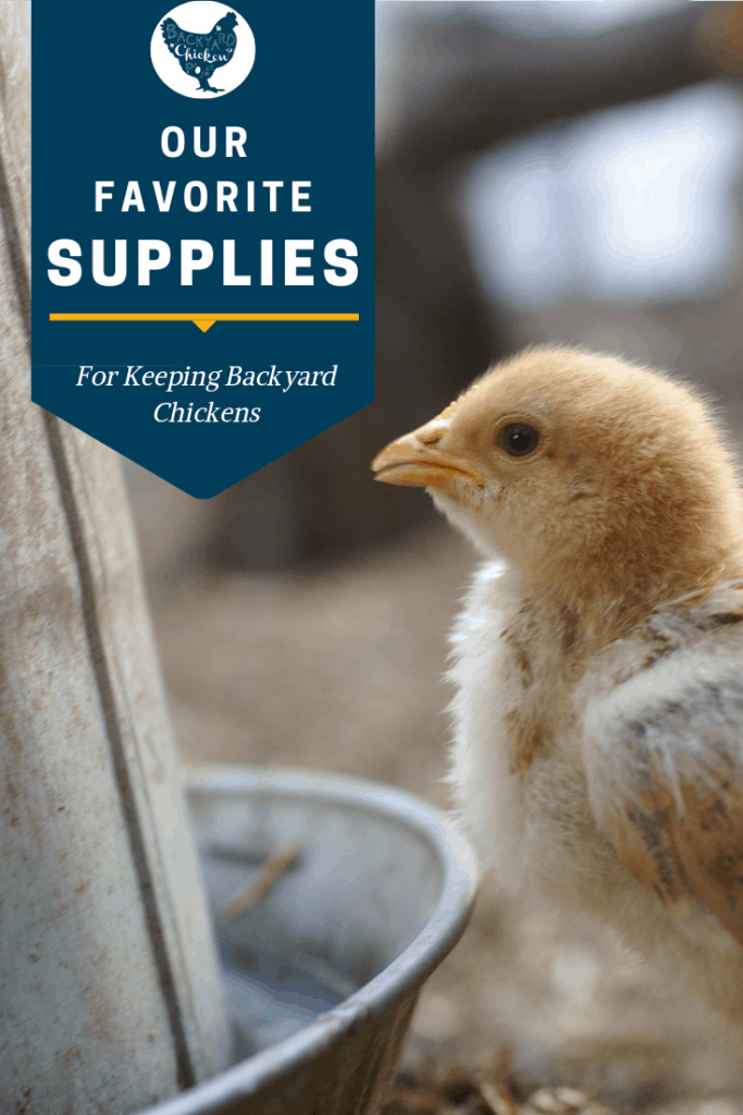 There are tons of chicken keeping supplies out there. These seven are the ones we truly couldn't live without! #homesteading #homestead #backyardchickens #chickens #raisingchickens #poultry