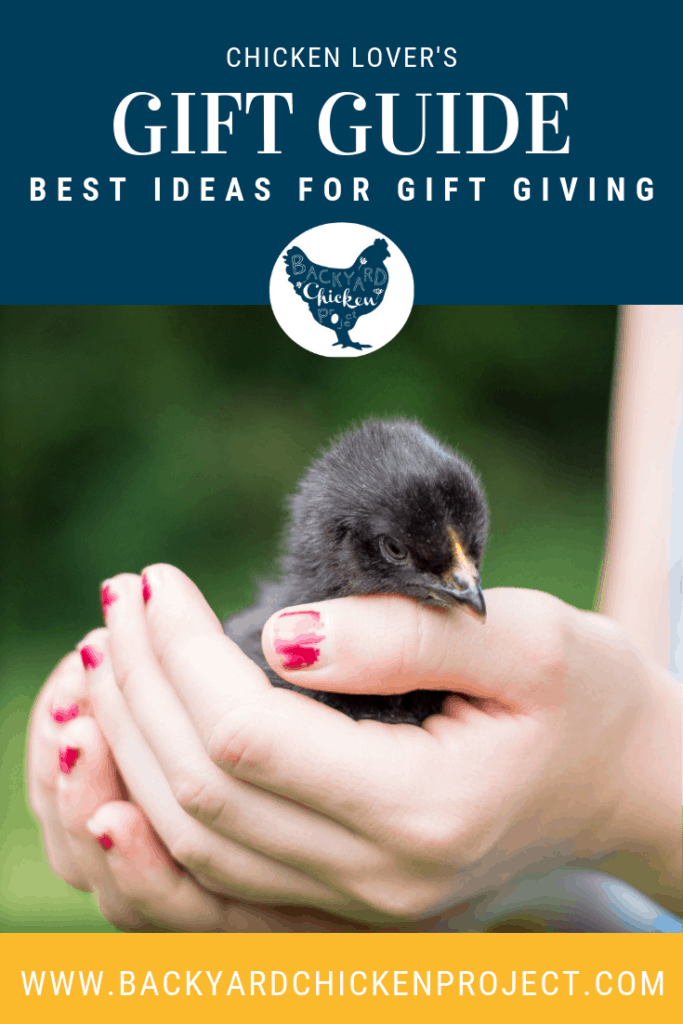 Those who love chickens really only want one thing... more chickens! Find the best gifts for a chicken lover here! #homesteading #homestead #backyardchickens #chickens #raisingchickens #poultry #giftideas