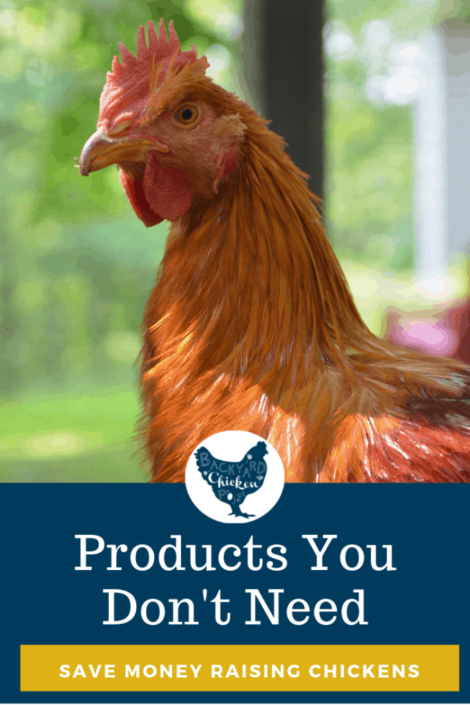 "Ditch these six chicken products you don't need you can save money raising chickens! Many things ""required"" to buy for chickens aren't necessary after all. #homesteading #homestead #backyardchickens #chickens #raisingchickens #poultry"