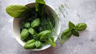 Grow these five herbs to promote good health in your chicken flock!